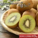 【ふるさと納税】A260.九州・福岡フルーツ王国より直送.人...