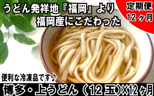 福岡・博多上うどん12玉入(便利な冷凍うどん)(定期便:全12回)