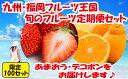 【ふるさと納税】B128.【2022年配送分・予約受付中】九