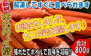 【ふるさと納税】特大サイズのボイルズワイガニ!鍋にしても美味しいランキング≪おすすめ10選≫の画像