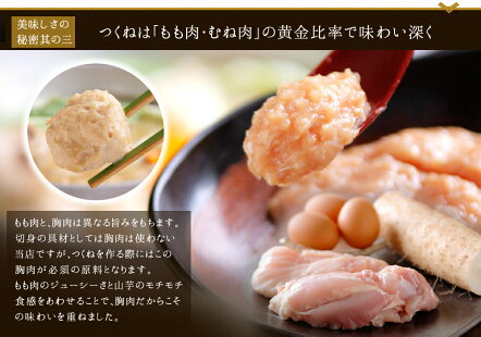 【ふるさと納税】AA31.【博多若杉】水炊き4〜5人前セット