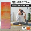 【ふるさと納税】畳ヨガECO skysea(66×185)(ローズ) 02-AT-0101r