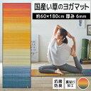 【ふるさと納税】畳ヨガJAPAN ジョイ(60×180)(レッド) 02-AO-0101r