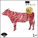 【ふるさと納税】最高額 ? A5 ランク 博多 和牛 丸ごと 1頭 !! (800〜900kg) 送料込