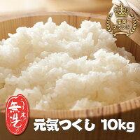 【ふるさと納税】磨き上げた高品質の無洗米!手間いらずの「福岡県産元気つくし」10kg