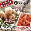 【ふるさと納税】博多若杉 牛もつ鍋(4〜5人前)&明太子セット