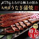 【ふるさと納税】九州産うなぎ蒲焼大3尾