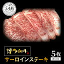 【ふるさと納税】KY3101 博多和牛サーロインステーキ 200g×5枚