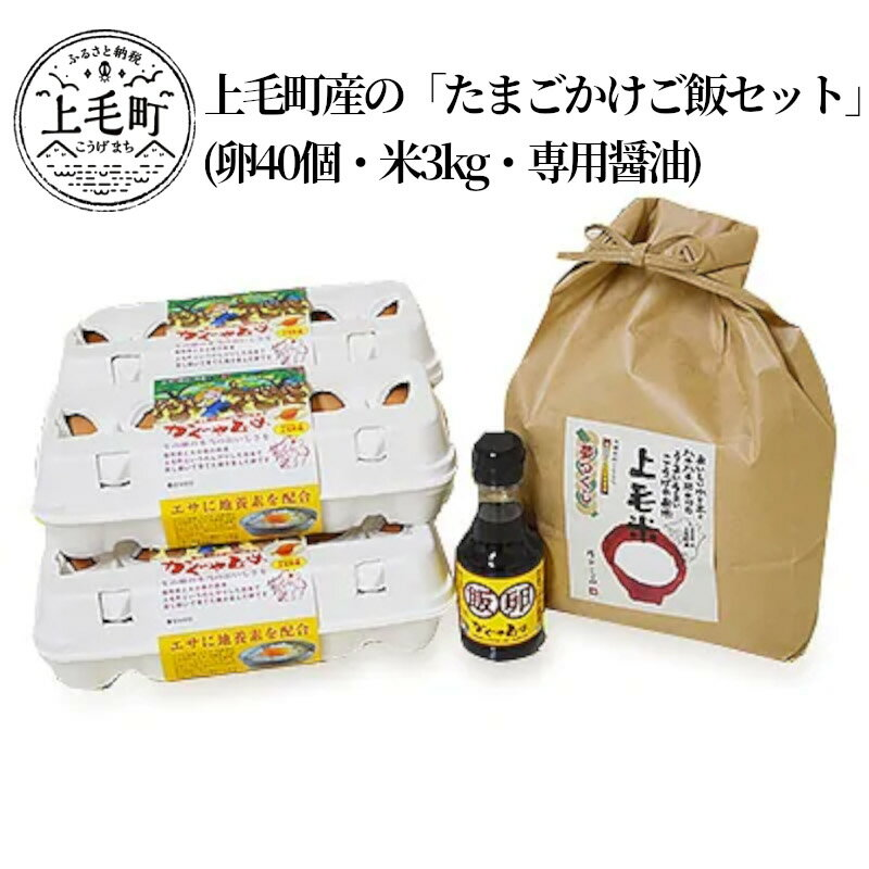 【ふるさと納税】C01101 上毛町産の「たまごかけご飯セット」(卵40個・米3kg・専用醤油)