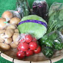 【ふるさと納税】C−019.旬の新鮮野菜の詰合せ