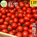 【ふるさと納税】11-06 佐賀県鳥栖産ミニトマト「紅雫(べ...
