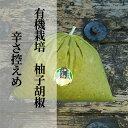 【ふるさと納税】b−180 銀座有名店使用の有機栽培柚子胡椒(ゆずこしょう)【青】【辛さ控えめ】1kg