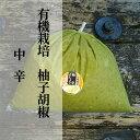 【ふるさと納税】b−181 銀座有名店使用の有機栽培柚子胡椒(ゆずこしょう)【青】【中辛】1kg