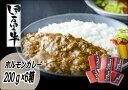 【ふるさと納税】J239伊万里牛ホルモンカレー - 佐賀県伊万里市
