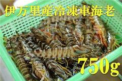 伊万里産冷凍車海老(加熱用)750g