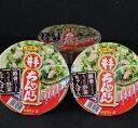 【ふるさと納税】TKB7-R041 井手ちゃんぽん(カップ麺