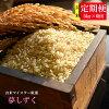 【ふるさと納税】G-18《6ヶ月毎月お届け》佐賀県産夢しずく玄米5kg定期便