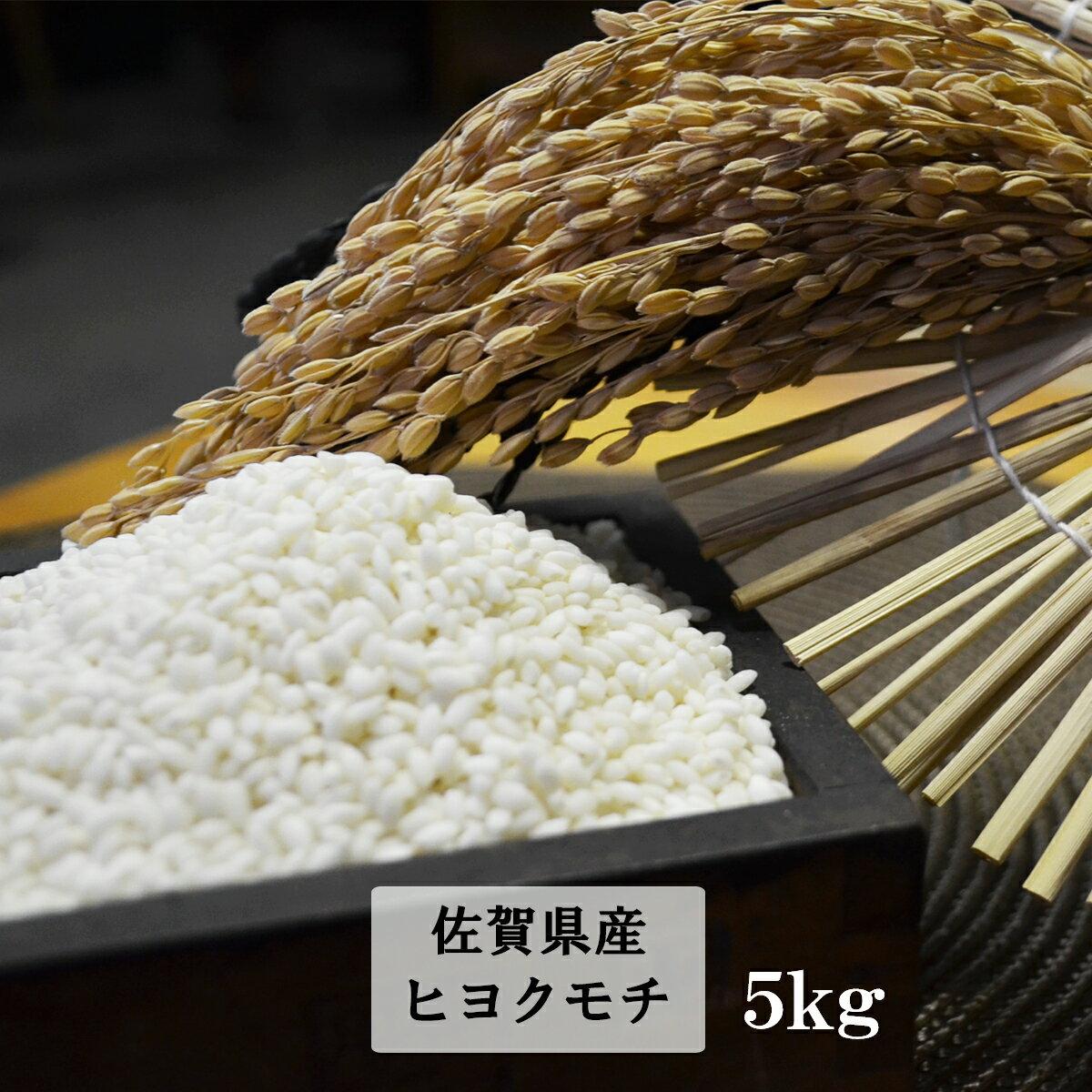 【ふるさと納税】B-101 鹿島市産もち米(ヒヨクモチ) 白米5kg