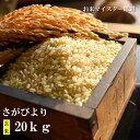 【ふるさと納税】D-12 【特A・令和元年産米】鹿島市産厳選