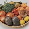 【ふるさと納税】E-33【6ヶ月お届け】肥前の国のお野菜定期便