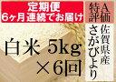 【ふるさと納税】G-4 《6ヶ月毎月お届け》佐賀県産さがびよ...