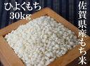 【ふるさと納税】E-32 佐賀県産もち米(ヒヨクモチ) 白米...