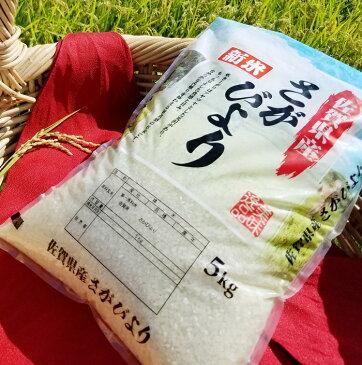 【ふるさと納税】 B-170 平成30年産 佐賀県産さがびより 10kg+もち麦300g