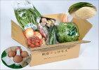 【ふるさと納税】H-5【6ヶ月お届け】肥前の国のお野菜・果物定期便