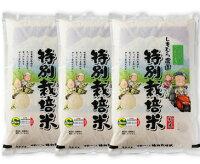 特A評価!特別栽培米さがびより27kg(白米)