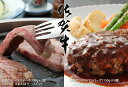 【ふるさと納税】D-7 リッチ!佐賀牛ハンバーグ(50g×5個)&ステーキ(200g×2P)