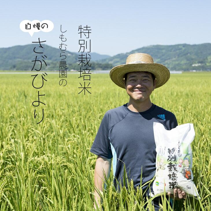 特別栽培米 白米 さがびより 27kg