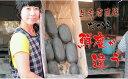【ふるさと納税】 佐賀県産泥付きレンコン(3kg) 送料無料