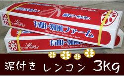 【ふるさと納税】 佐賀県産泥付きレンコン(3kg) 送料無料 画像1