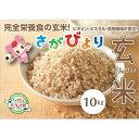 【ふるさと納税】令和元年産 さがびより玄米10kg (H01...