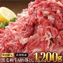 【ふるさと納税】※総合ランキング1位獲得 佐賀県産黒毛和牛切