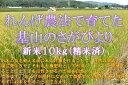 【ふるさと納税】A7-001 【新米】れんげ農法 さがびより...