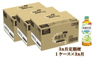 【3カ月定期便】爽健美茶600mlPET(1ケース×3月)