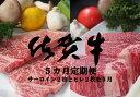 【ふるさと納税】L-014R 佐賀牛ヒレ・サーロインステーキ5カ月定期便(計20枚)