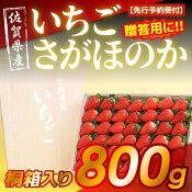 【ふるさと納税】【先行予約受付】佐賀県産高糖度いちごさがほのか800g桐箱入り