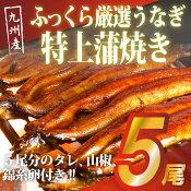 【ふるさと納税】九州産ふっくら厳選うなぎ特上蒲焼き5尾