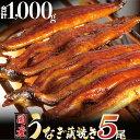 【ふるさと納税】うなぎ蒲焼専門店「柳屋」国産うなぎ蒲焼 (約200g×5尾)