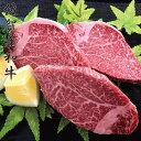 【ふるさと納税】【佐賀産和牛】ヒレステーキ120gx3枚