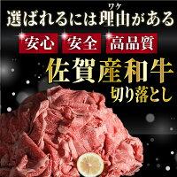 【ふるさと納税】佐賀産和牛切り落とし1000g(500g×2パック)