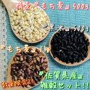 国内産 もち麦(米粒麦)(630g)【創健社】