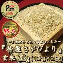 【ふるさと納税】みやき町産「特選さがびより」玄米20kg(1