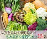 【ふるさと納税】八百屋さんでは買えないイタリアン野菜セット(12品)(BG151)