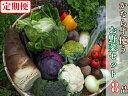 【ふるさと納税】【定期便】必ず使うお野菜セット(8品)(12回コース)(BG162)