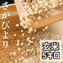 送料無料 広島県産ひとめぼれ 30kg 玄米 5kg×6緑袋令和3年産 新米 1等米