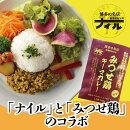 【ふるさと納税】博多の名店ナイルみつせ鶏キーマカレー10パックセット(DR002)