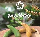 【ふるさと納税】【国産バナナ】みやき神バナナ5本セット(AI001)